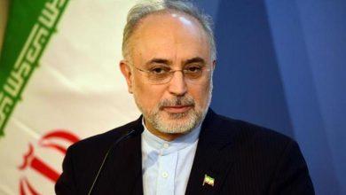 Photo of ایران ترقی پذیر ملکوں میں سب سے زیادہ خود مختار، علی اکبر صالحی
