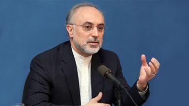 Photo of ایران اپنی جوہری سرگرمیوں کو جاری رکھے گا: صالحی