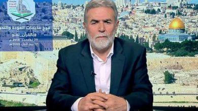 Photo of ایران ہی فلسطین کا واحد حامی ہے، جہاد اسلامی فلسطین