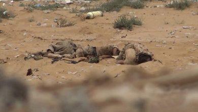Photo of یمنی فوج کی جوابی کارروائی، سعودی اتحاد کے دسیوں فوجیوں کی ہلاکت