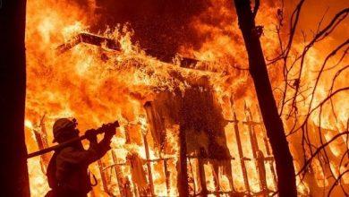 Photo of چین کے جنگلات میں آگ لگنے سے ہلاکتوں کی تعداد 30 ہوگئی