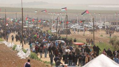 Photo of پرامن واپسی مارچ پر وحشیانہ حملہ، فلسطینی لڑکی شہید