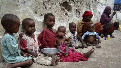 Photo of سوڈان میں 70 لاکھ افراد کوغذائی قلت کاسامنا