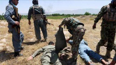 Photo of افغان فورسز کی کارروائی 15 طالبان ہلاک