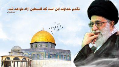 Photo of آزادیِ فلسطین، عالمِ اسلام کی مشکلات کا حل