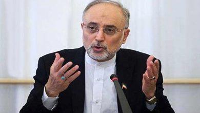 Photo of ایٹمی ٹیکنالوجی کا فروغ ایران کا ناقابل انکار حق ہے، علی اکبر صالحی