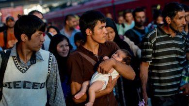 Photo of افغان تنازع پرلاکھوں افراد نقل مکانی پر مجبور