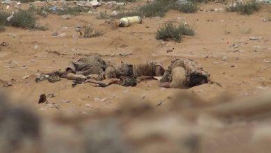 Photo of سعودی اتحاد کے 10 فوجی ہلاک