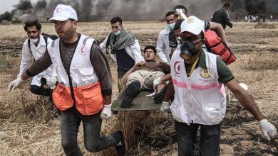 Photo of صیہونی جارحیت ایک فلسطینی شہید 97 زخمی