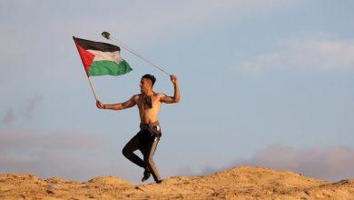 Photo of فلسطینی عزم و حوصلے کی عکاسی کرتی ایک شاندار تصویر