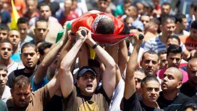 Photo of غزہ پر فضائی حملوں میں شہید ہونے والوں کی تعداد سولہ ہوگئی