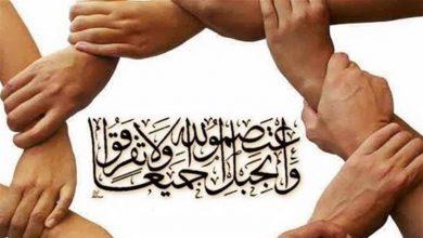 Photo of شیعہ اور سنی اسلام کے دو بازو ہیں: شیعہ و سنی علماء