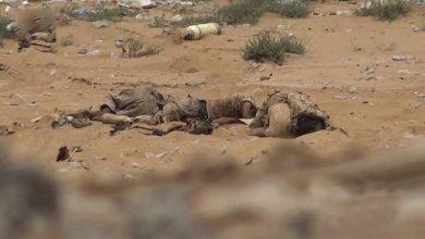 Photo of یمنی فوج کے حملوں میں دسیوں جارح فوجی ہلاک اور زخمی