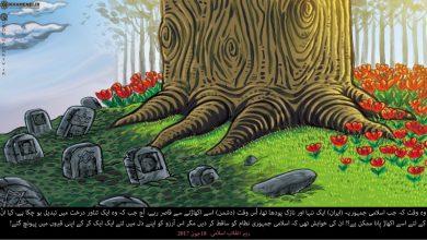 Photo of اسلامی انقلاب، ایک تناور درخت! ۔