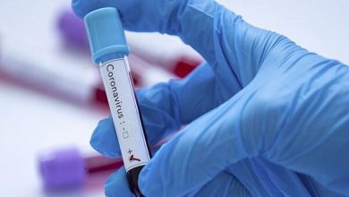 Photo of ترکی میں کورونا وائرس میں مبتلا افراد کی تعداد 42 ہزار سے زائد ہوگئی