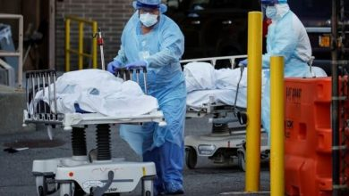 Photo of امریکہ میں کورونا وائرس سے 80 ہزار سے زائد افراد ہلاک