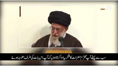 Photo of حضرت خدیجہ سلام اللہ علیہا کی فضیلت، رہبر انقلاب اسلامی کی زبانی+ ویڈیو