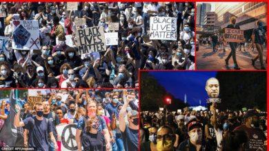 Photo of امریکی عوام تین وائرسوں کے محاصرے میں؛ کورونا، نسل پرستی اور ٹرمپ
