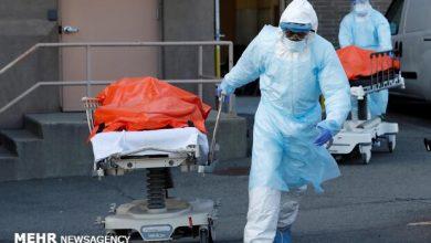 Photo of امریکہ میں کورونا وائرس سے اب تک 1 لاکھ 30 ہزار سے زائد افراد ہلاک