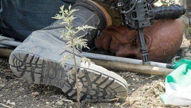 Photo of فلسطینی گردن پر صیہونی گھٹنہ، عرب غداری پر اترے، دنیا خاموش