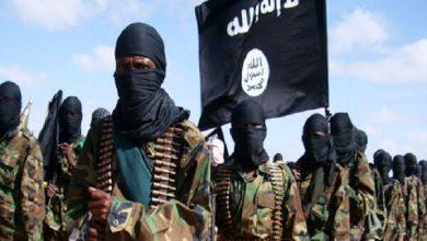 Photo of پاکستان کے وہابی اداروں کی طرف سے داعش کو مدد مل رہی ہے