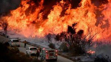 Photo of گنی کوناکری میں ہولناک آتشزدگی سے مرنے والوں کی تعداد میں اضافہ