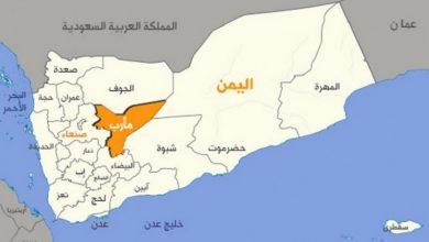Photo of مارب کی آزدای کے لئے یمن کے حوانوں کا عزم